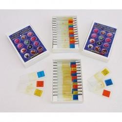 24 Vetrini Preparati per Tutti i Microscopi Insetti - Botanica Made in Italy