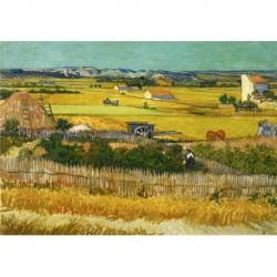 Poster Van Gogh Art. 03 cm 50x70 Stampa Falsi d'Autore Affiche Plakat il negozio di Alex